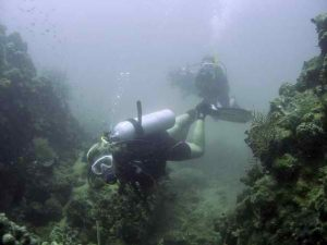 Scuba diving for fun and relaxation