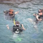 cheap quality scuba courses