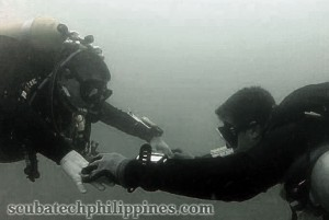 scuba diving buddy system
