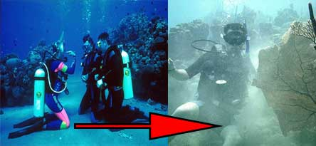 scuba-diving-skills-trim-buoyancy-4