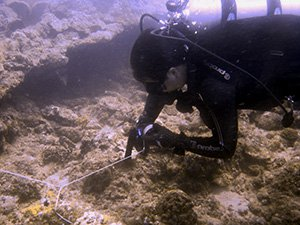padi wreck diving course philippines