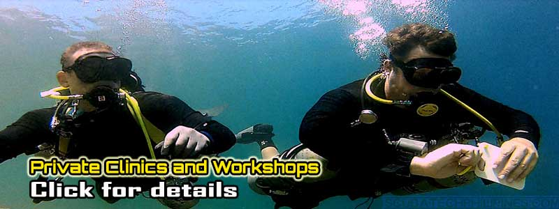 Fundamentals foundations pre-tech clinics training courses diving skills
