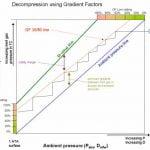 gradient factors